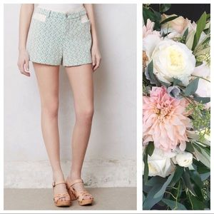 Anthro Cartonnier Green Rose Point Shorts Size 2